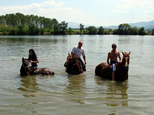 The passage with the horses continues even in the water